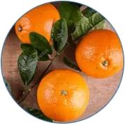 Ekstrakt af bitter appelsin