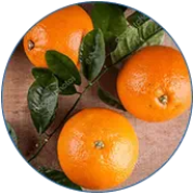 Extrato de laranja amarga